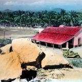 Lugar desconocido por fotografica mexicana ( 1930-1950 ) - Anónimas, Anónimas