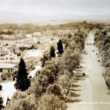 Panorama el Castillo de Chapultepec al fondo ( 1930-1950 ) - Ciudad de México, Distrito Federal