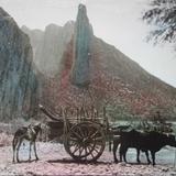 Panorama de La Huasteca (  1930-1950 )
