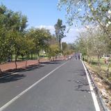 Ciclopista del Parque Ecológico Revolución Mexicana. Marzo/2016