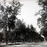 Avenida Lafayette ( 1930-1950 )
