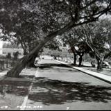 Avenida de La Cruz ( 1930-1950 )