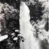 Una Cascada por los alrededores de Tepic ( 1900-1920 )