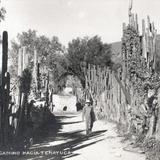 Camino a Tenayuca