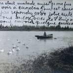 El Lago del Parque Juarez ( Fechada el 24 de Agosto de 1906 )