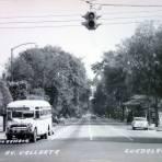 Avenida Vallarta.