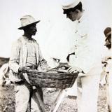 Tipos Mexicanos  Vendedor de Frutas durante la Intervencion Estadounidense.