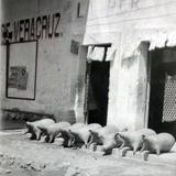 Mercado de Pulque Alrededores de San Juan Teotihuacan Edo.de Mexico en 1928.