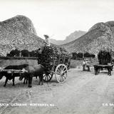 Cañón de Santa Catarina - Santa Catarina, Nuevo León
