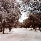 Entrada al Bosque de Chapultepec.