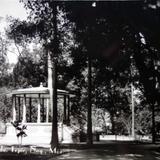 La Alameda. - Tepic, Nayarit