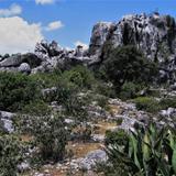 Valle de los Fantasmas - San Nicolás Tolentino, San Luis Potosí