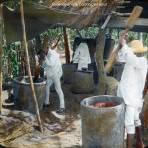 Moliendo el cafe Cordoba Veracruz - Amatlán, Veracruz