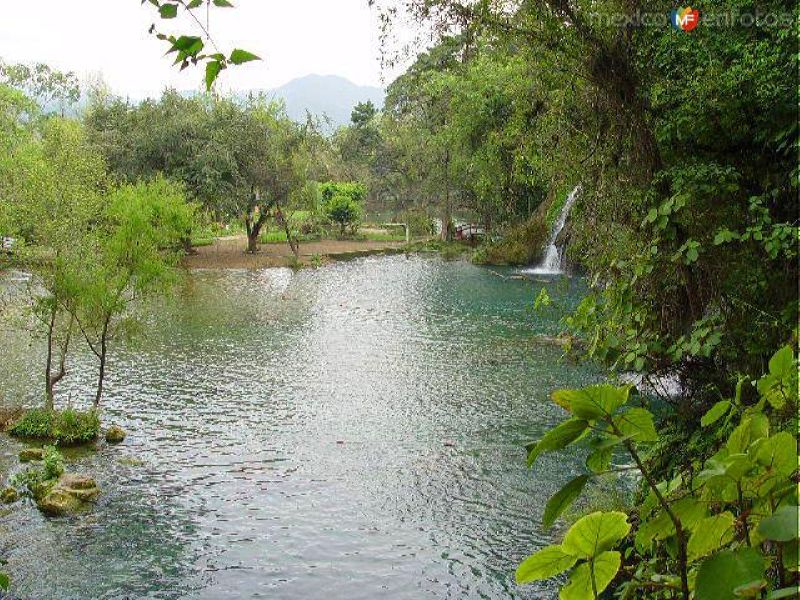 Cascadas de Tamasopo