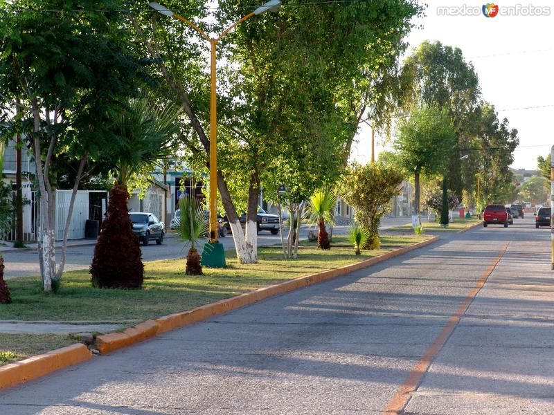Avenida General Trasviña y Retes
