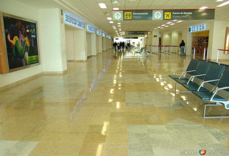 Aeropuerto Internacional Francisco Sarabia