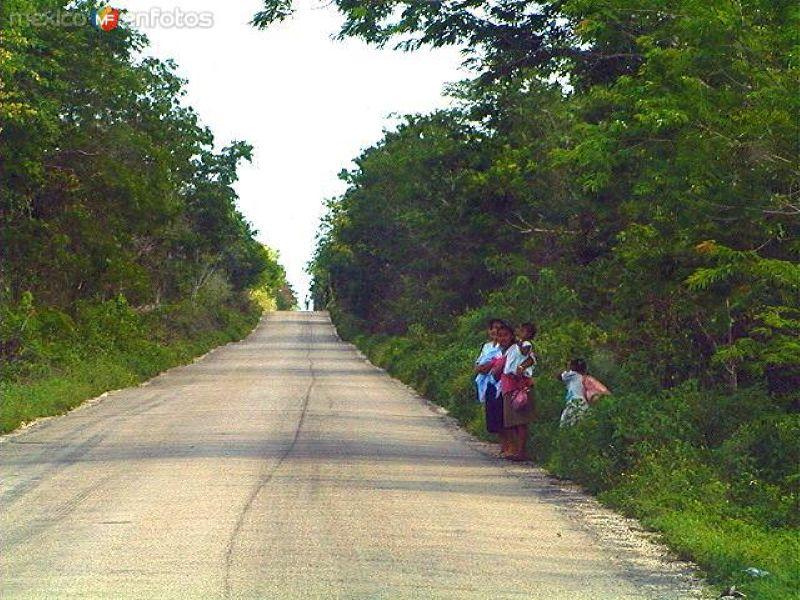 Camino a Cobá
