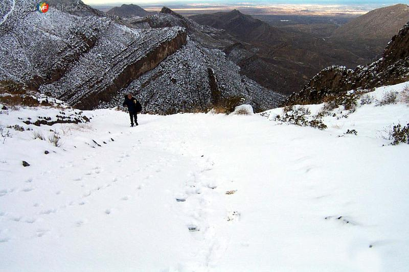 Sierra de Juárez