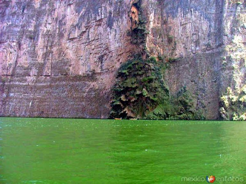 Cascada Árbol de Navidad (sin agua)