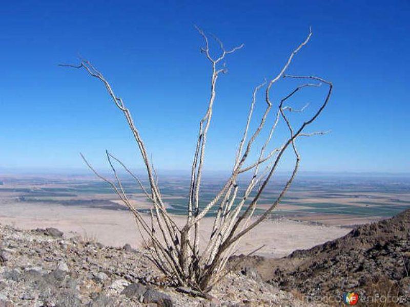 Cerro del Centinela
