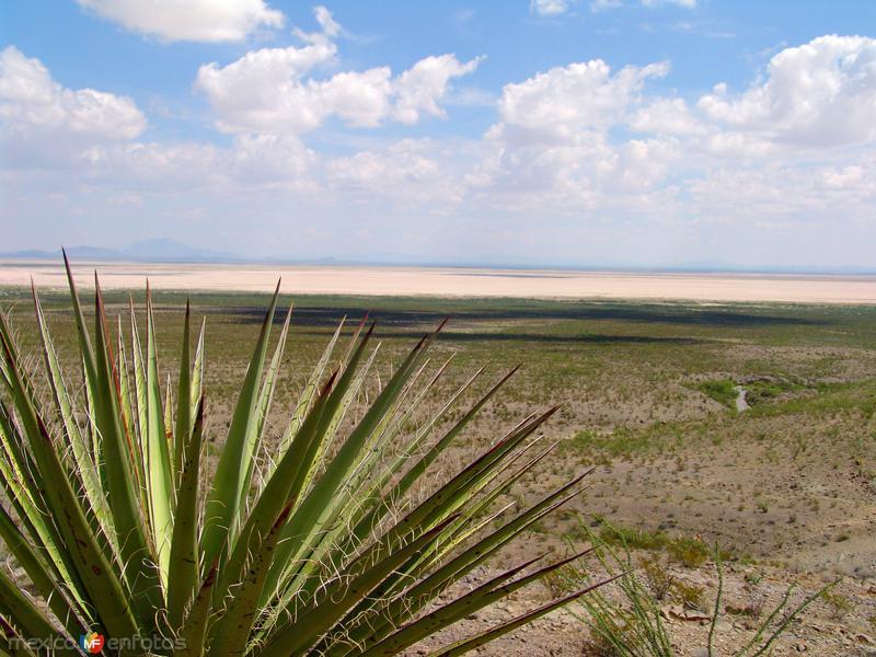 Vista hacia la Laguna El Barreal