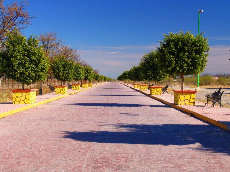 Paseo Viesca