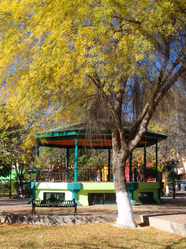Plaza Principal o Plaza Juárez