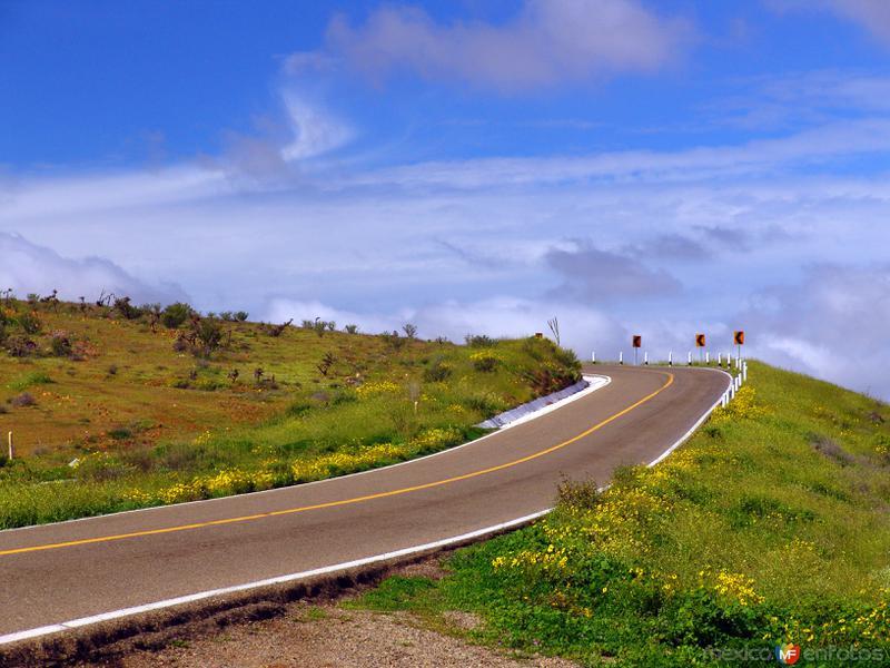 Carretera Transpeninsular (México-1)