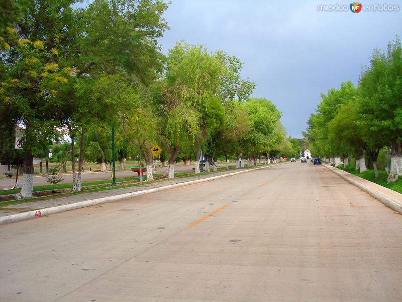 Calles de Aldama
