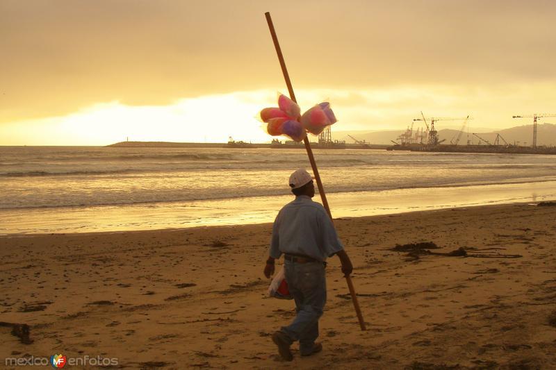 Algodonero en las playas de Rosarito
