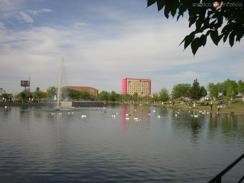 Desde el Parque Central