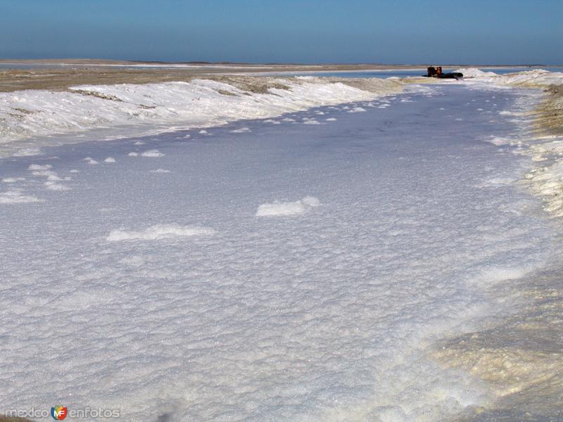 Salinas: Canales de transportación de agua marina