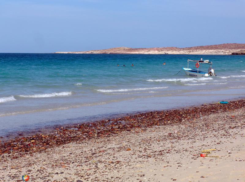 Playa del Tecolote