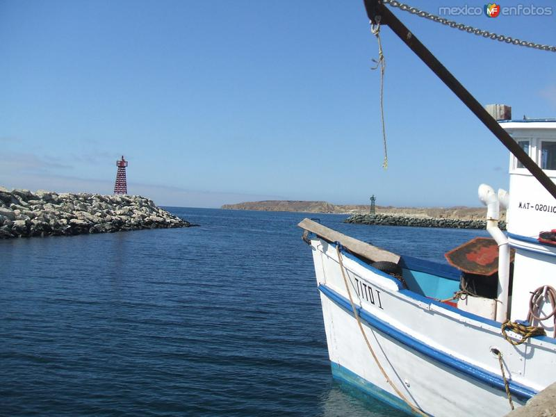 Isla de Cedros