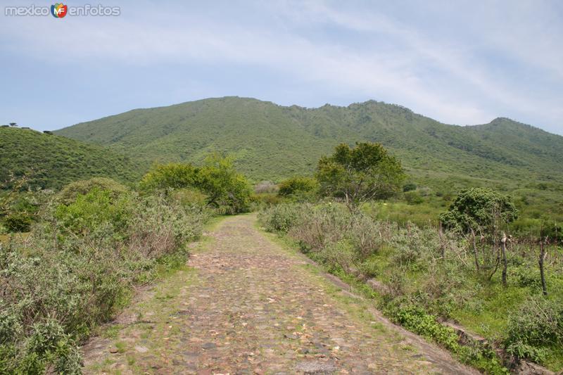 Ascenso al volcan el Ceboruco