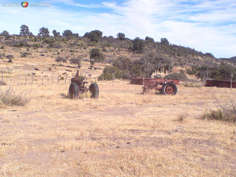 tractores viejos en lasierra de parreños.