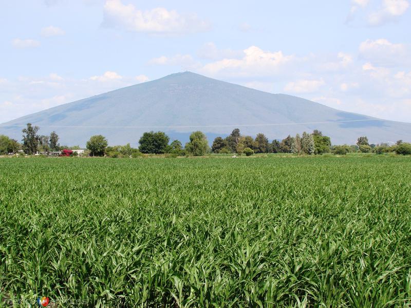 Cerro El Culiacan