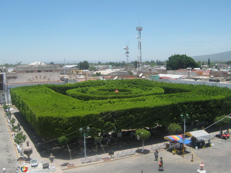 Jardin Principal Apaseo el Grande