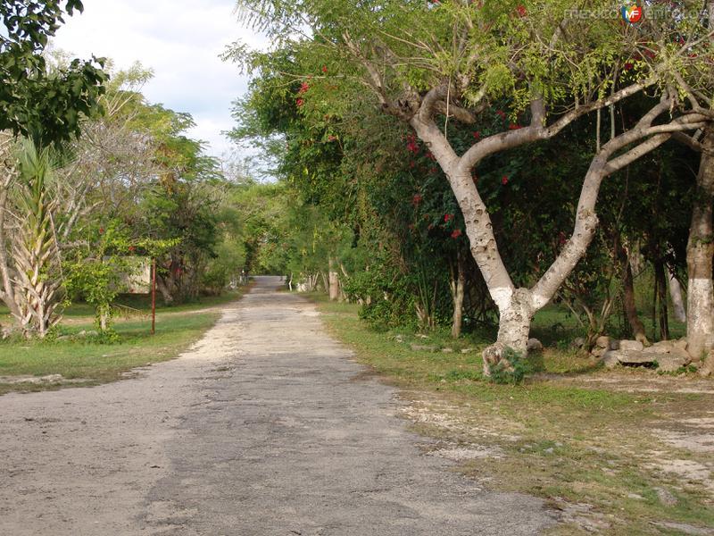 Entrada a la zona arqueológica de Mayapán