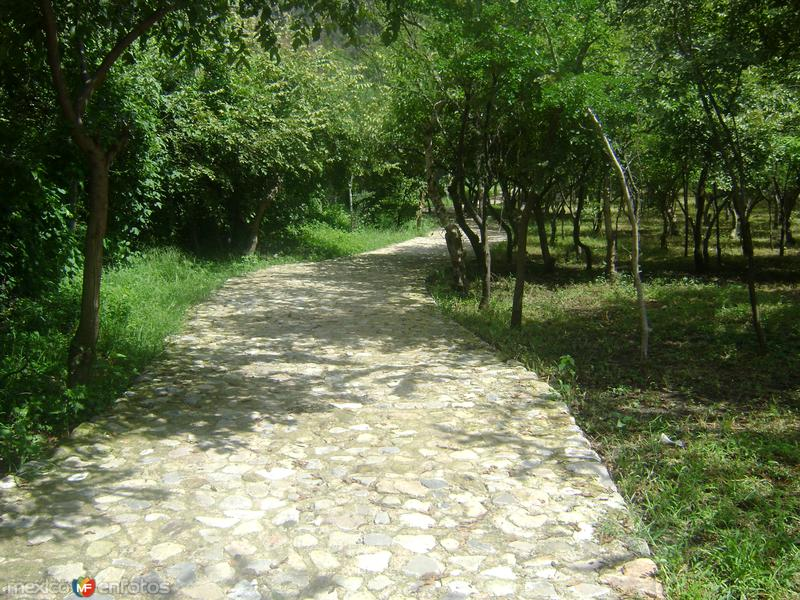 Calzada de acceso a la zona arqueológica de Chalcatzingo. Agosto/2011