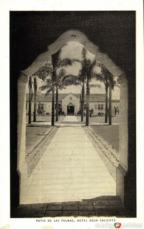 Patio de las Palmas