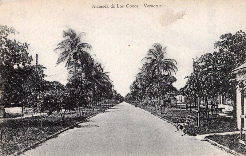 Alameda de los Cocos