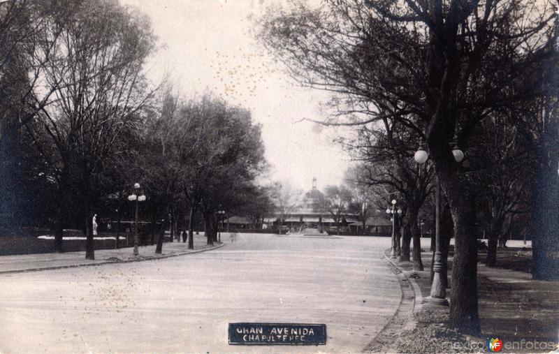 Gran Avenida Chapultepec