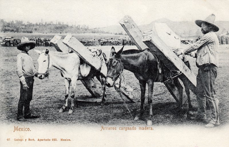 Arrieros cargando madera