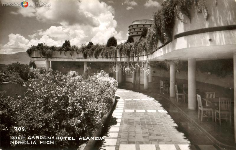 Jadín del Hotel Alameda