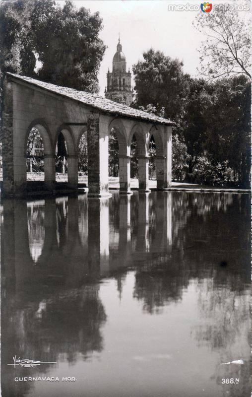 Jardín Borda. Al fondo la torre de la Catedral de Cuernavaca
