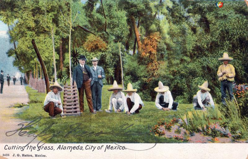 Cortando el pasto en la Alameda