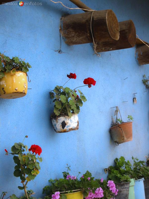 La humildad de esta vivienda muestra con dignidad la belleza de su arquitectura vernácula en el colorido de sus muros