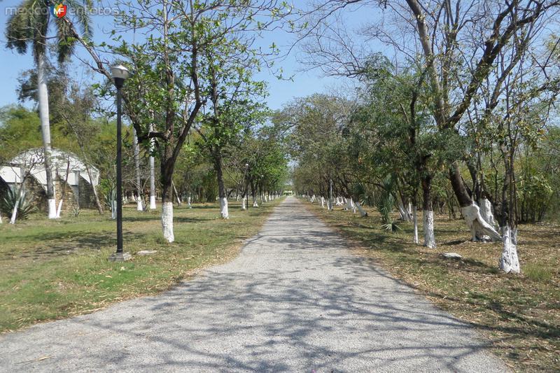 Alemeda Municipal Marzo 2014