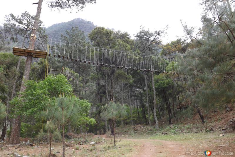 Puente colgante en Centro Ecoturístico Tulimán. Marzo/2014